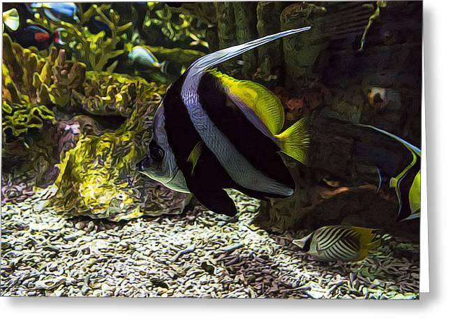 Aquarium Fish Greeting Cards - Color Beneath Greeting Card by Janet Fikar