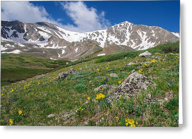 Most Photographs Greeting Cards - Colorado 14ers Grays Peak and Torreys Peak Greeting Card by Aaron Spong