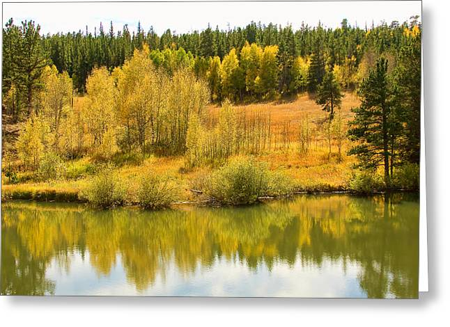 Striking Images Greeting Cards - Colorado Autumn Reflections Greeting Card by James BO  Insogna