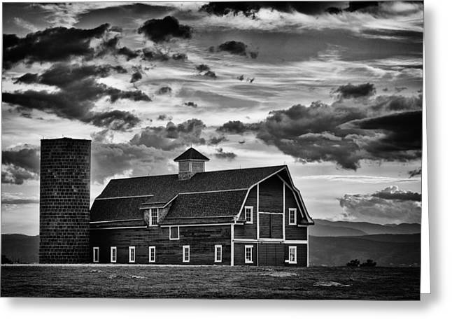 White Barns Greeting Cards - Colorado Barn Monochrome Greeting Card by Darren White