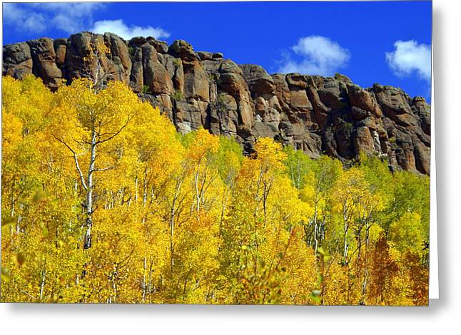 Marty Koch Greeting Cards - Colorado Fall 3 Greeting Card by Marty Koch