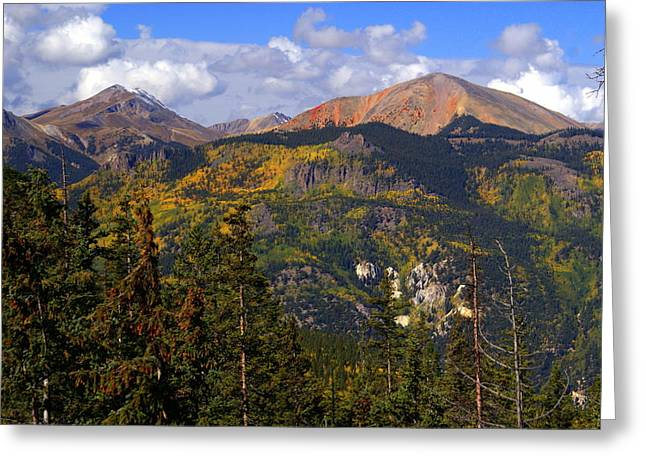 Marty Koch Photographs Greeting Cards - Colorado Fall Greeting Card by Marty Koch