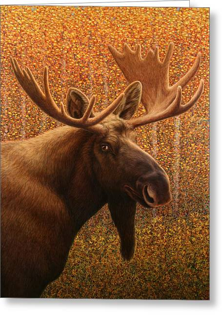 James W Johnson Greeting Cards - Colorado Moose Greeting Card by James W Johnson