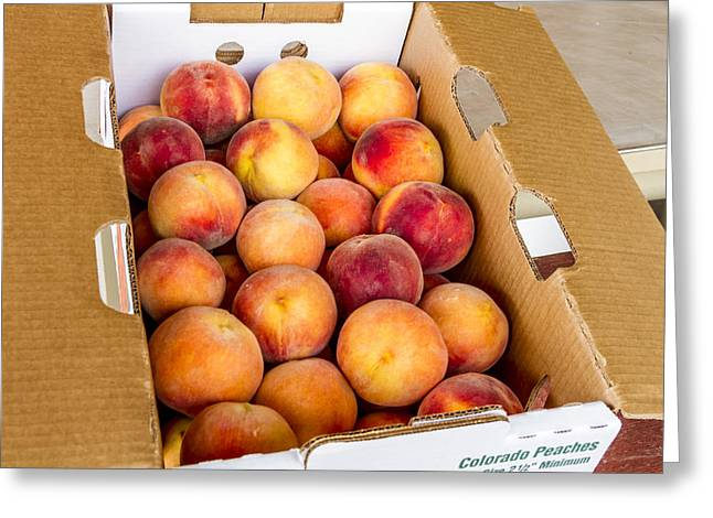 Colorado Peaches Ready For Market Greeting Card by Teri Virbickis