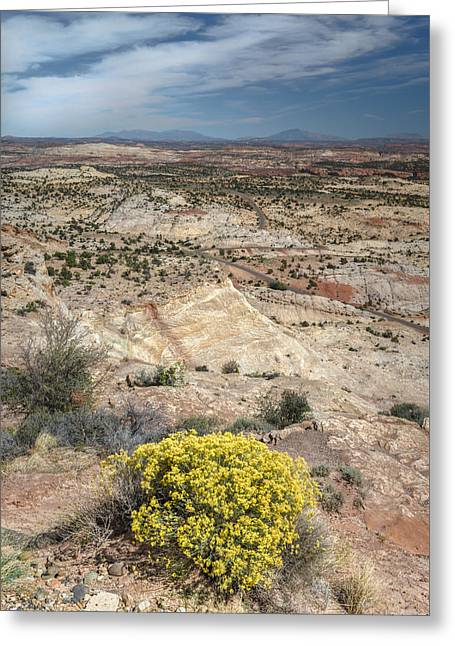 Colorado Plateau Greeting Card by Joseph Smith