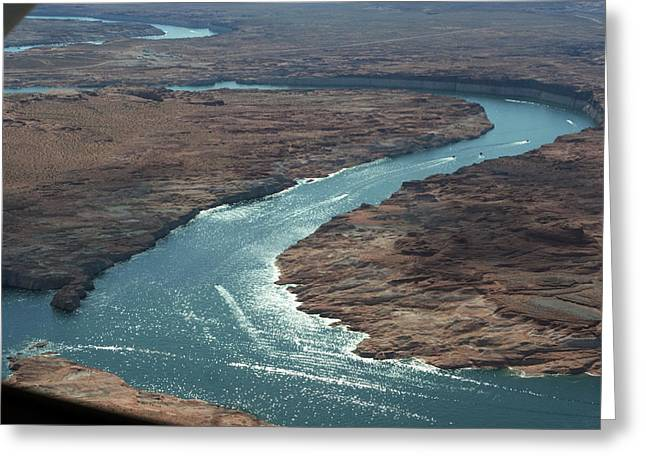 River View Greeting Cards - Colorado River in Arizona Greeting Card by Carl Purcell