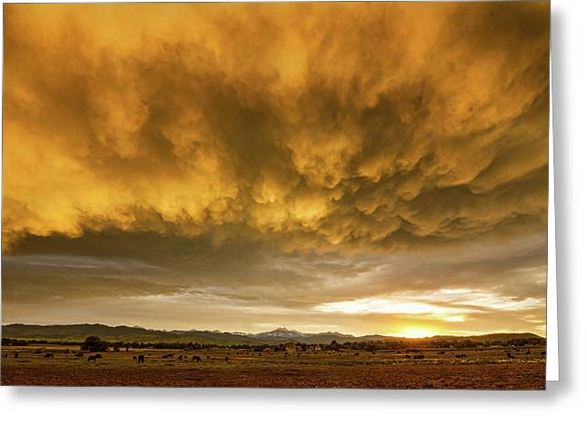 Colorado Severe Thunderstorm Fury Sunset Greeting Card by James BO Insogna
