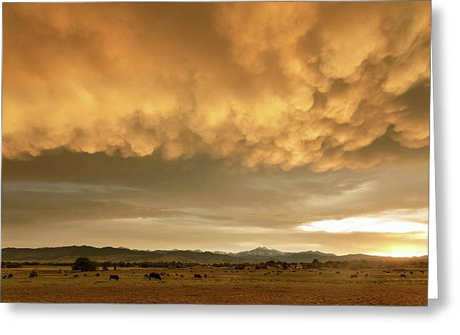 Colorado Sunset Stormin Greeting Card by James BO Insogna