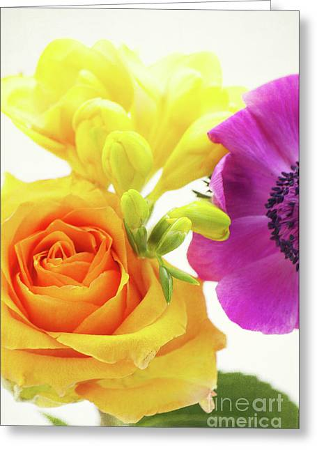 Violett Greeting Cards - Colored Greeting Card by Angela Doelling AD DESIGN Photo and PhotoArt