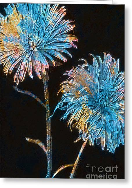 Asters Mixed Media Greeting Cards - Colored Garden Asters Greeting Card by T Anderson