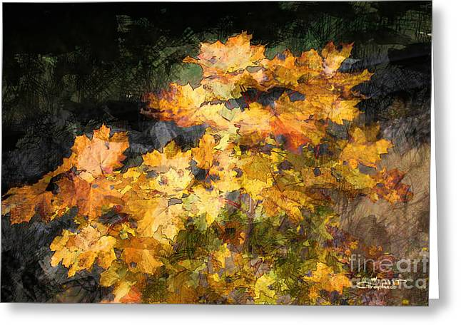 Postwork Greeting Cards - Colored Maple Leaves Greeting Card by Jutta Maria Pusl