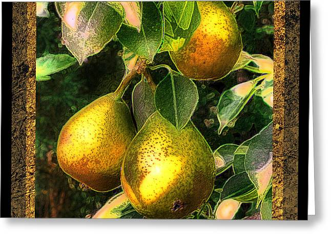 Pear Art Digital Art Greeting Cards - Colored Pears Greeting Card by Sari Sauls