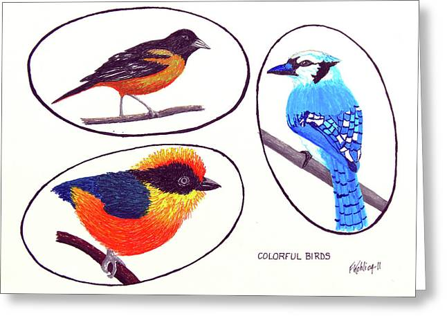 Pen And Ink Framed Prints Greeting Cards - Colorful Birds Greeting Card by Frederic Kohli