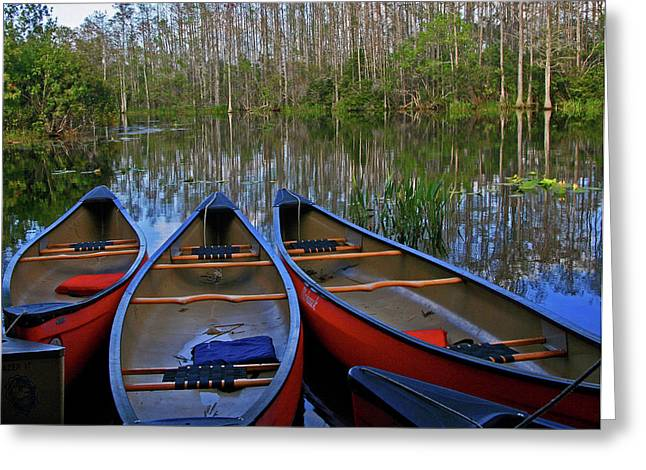 Reflections Of Sky In Water Greeting Cards - Colorful Canoes Greeting Card by Sharon Kalniz
