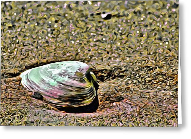 Coastal Maine Greeting Cards - Colorful Clam Greeting Card by  Judy Bernier