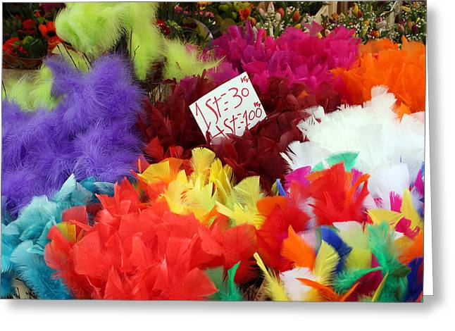 Colorful Easter Feathers Greeting Card by Linda Woods