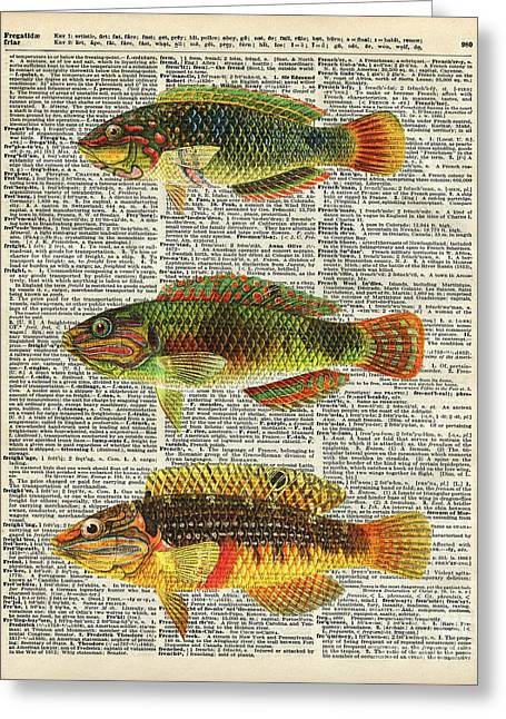 Colorful Fishes Greeting Card by Jacob Kuch