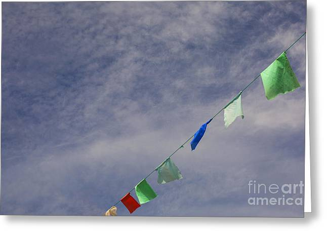 Colorful Flags Greeting Card by Patricia Hofmeester