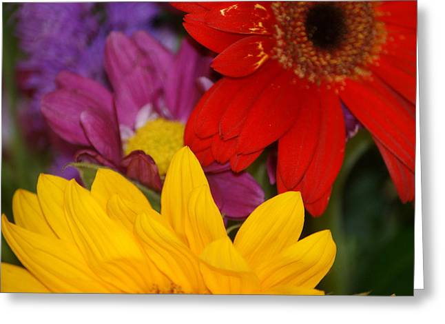 Colorful Flowers Greeting Card by Liz Vernand