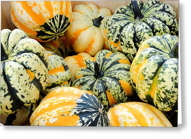 ist Photographs Greeting Cards - Colorful Gourds and Pumpkins Greeting Card by Cynthia Woods