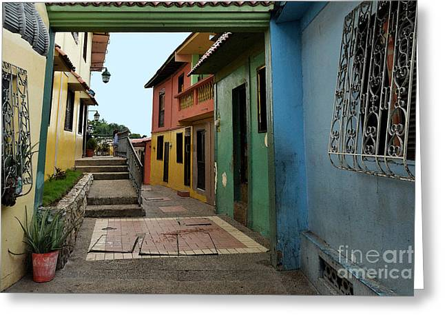The Houses Greeting Cards - Colorful Guayaquil Alley Greeting Card by Catherine Sherman