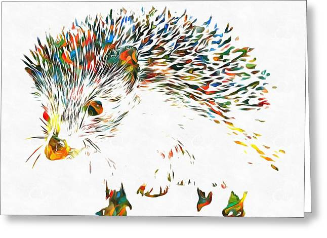 Colorful Hedgehog Greeting Card by Dan Sproul