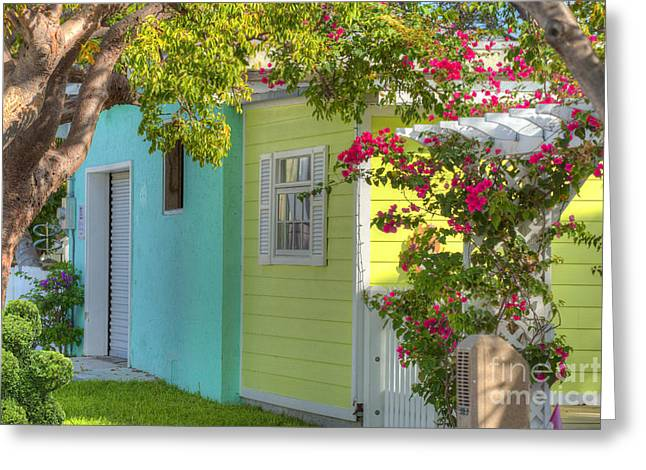 Color Colorful Greeting Cards - Colorful Island Home Greeting Card by Juli Scalzi