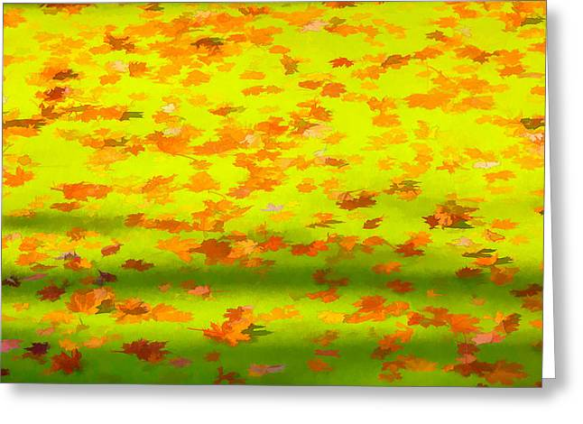 Abstract Water And Fall Leaves Greeting Cards - Colorful Leaves on Canal Greeting Card by David Letts