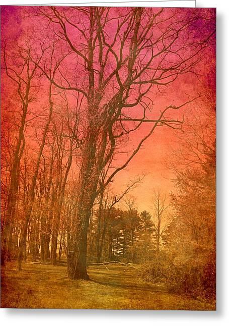 Bayonet Greeting Cards - Colorful Moment - Bayonet Farm Greeting Card by Angie Tirado
