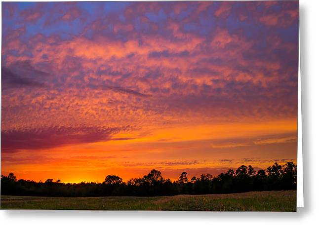 Colorful Palette In The Sky Greeting Card by Shelby Young