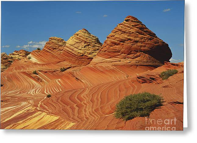 Lithified Greeting Cards - Colorful Sandstone In Arizona Greeting Card by Adam Jones