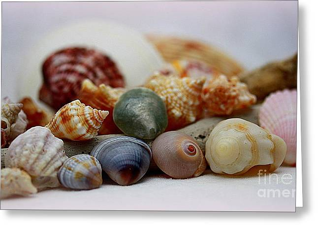 North Sea Greeting Cards - Colorful Sea Collection Greeting Card by Patti Whitten