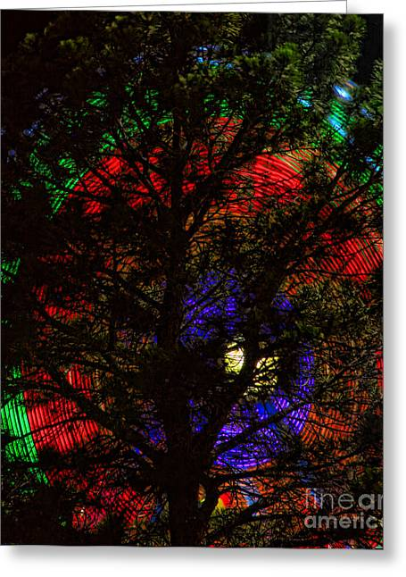 Lightning Gifts Greeting Cards - Colorful Tree Greeting Card by James BO  Insogna