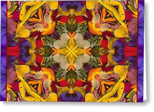 Garden Mandala Greeting Cards - Colorific Greeting Card by Bell And Todd