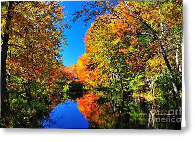 Western Ma Photographs Greeting Cards - Colors of the Rainbow Greeting Card by Catherine Reusch  Daley