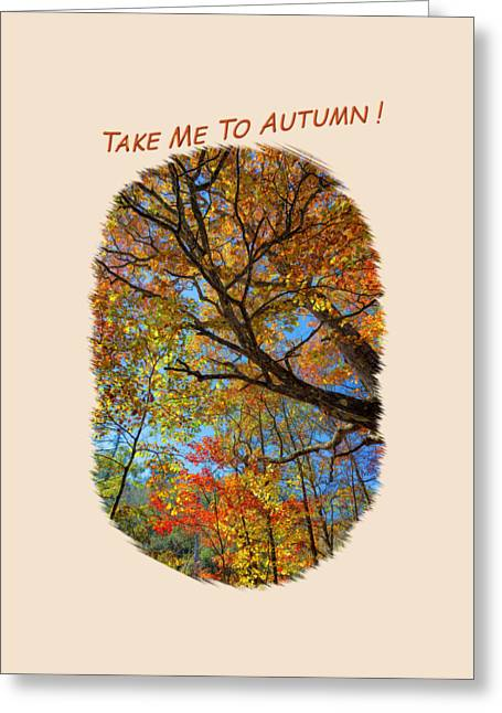 Apparel Greeting Cards - Colors On High 2 Greeting Card by John Bailey