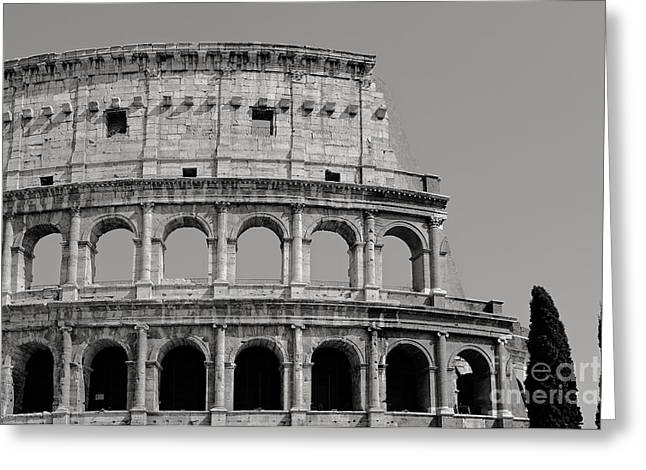 Colosseum Or Coliseum Black And White Greeting Card by Edward Fielding
