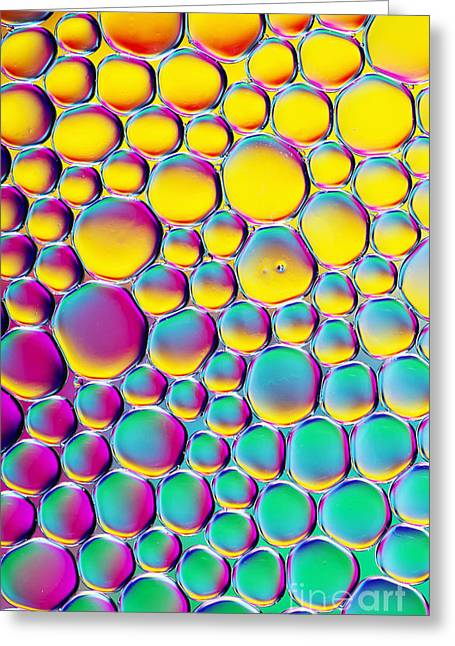 Colour Full Greeting Card by Tim Gainey