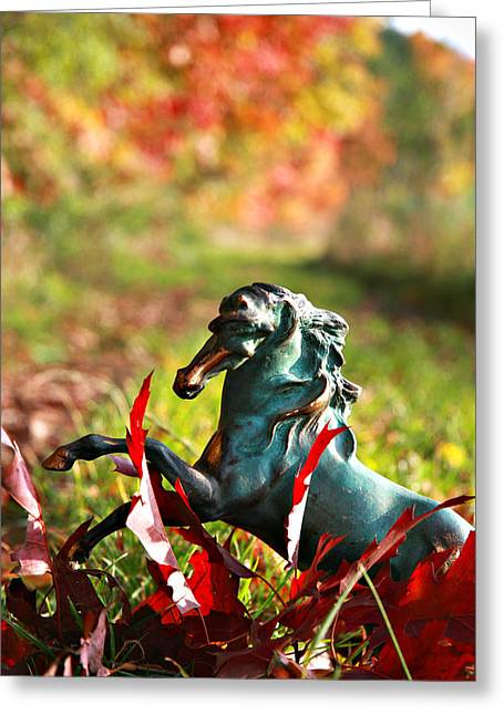 White Horses Photographs Posters Greeting Cards - Colourful Autum Greeting Card by El Luwanaya Arabians
