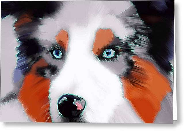 Dogs Digital Greeting Cards - Colourful Collie Dog Greeting Card by Karen Harding