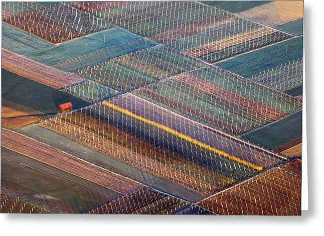 Aerials Greeting Cards - Colours Greeting Card by Matjaz Cater