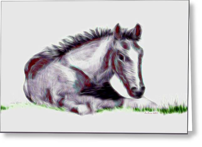 Apparel Greeting Cards - Colt Greeting Card by EricaMaxine  Price