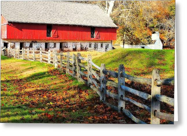 Come October Greeting Card by Tami Quigley