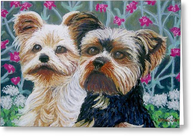 Terriers Pastels Greeting Cards - Come Play with ME close-up Greeting Card by Minaz Jantz