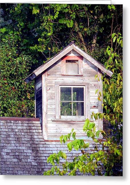 Outbuildings Greeting Cards - Come to My Window Greeting Card by Wild Thing