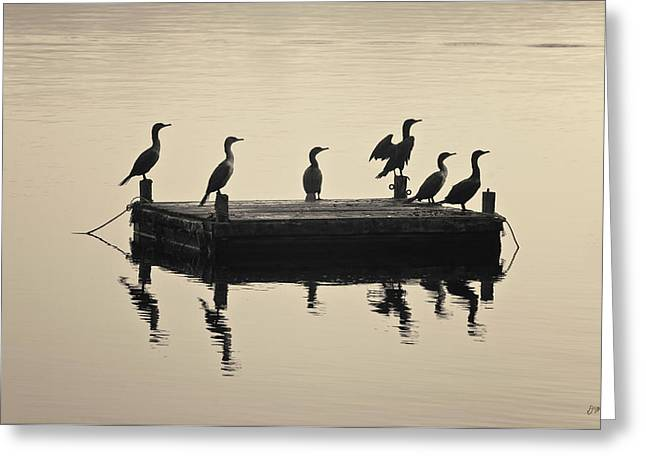 Warm Tones Greeting Cards - Comerants and Dock Taunton River Greeting Card by David Gordon