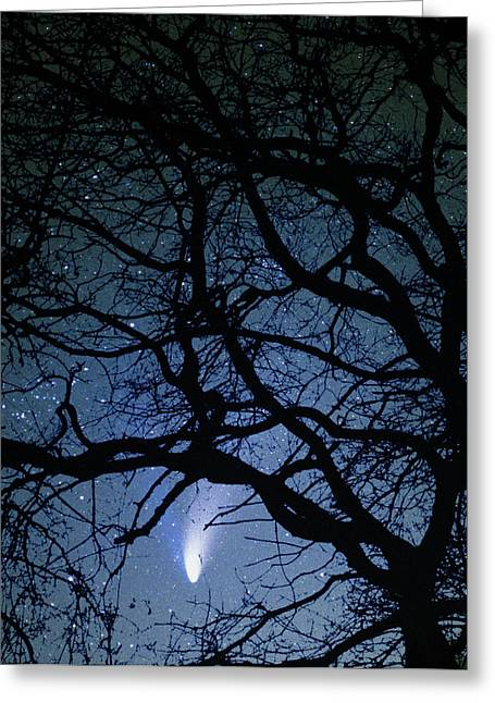 Amateur Greeting Cards - Comet Hale-bopp Greeting Card by Detlev Van Ravenswaay