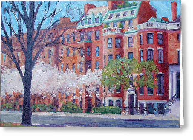 Dianne Panarelli Miller Greeting Cards - Comm Ave Magnolias Greeting Card by Dianne Panarelli Miller