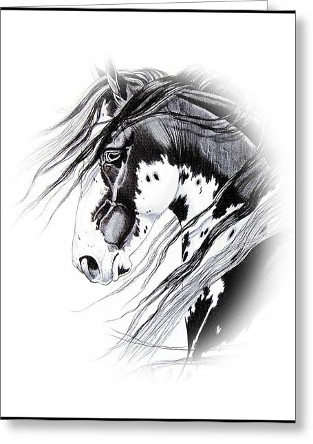 Horse Images Drawings Greeting Cards - Commanche Greeting Card by Cheryl Poland