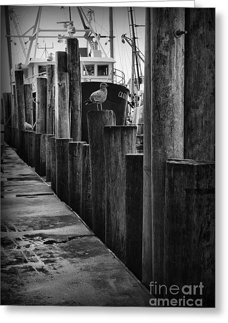 Commercial Fishing Docks Of Nj Greeting Card by Paul Ward